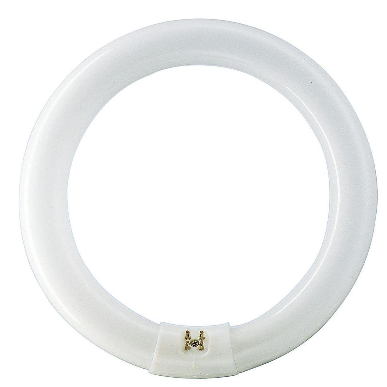 Лампа люминесцентная Philips TL-E 32W/54-765 1CT/12 G10q D308*d31 Кольцо дневн  - Купить