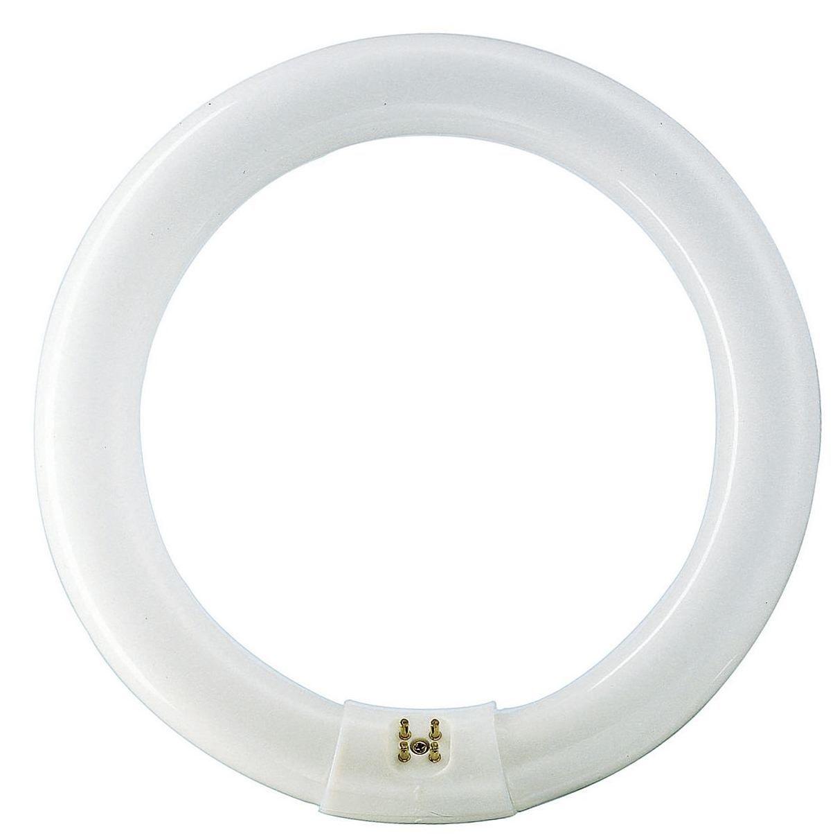 Купить Лампа люминесцентная Philips TL-E 22W/54-765 1CT/12 G10q D219*d31 Кольцо дневн